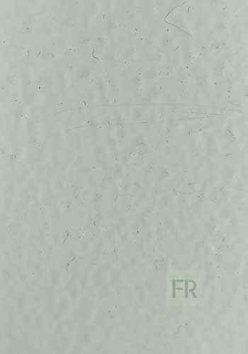 Цвет внешней отделки двери Белая шагрень